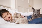 Cat's parasites